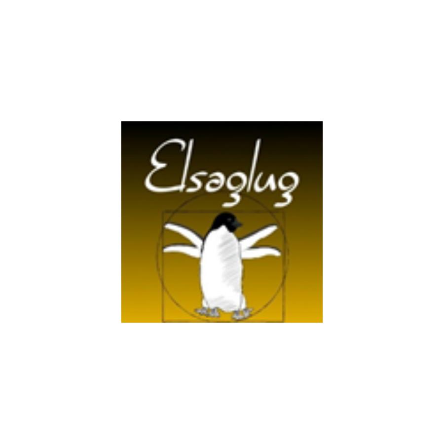 logo ElsaGLUG